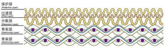 标准五ceng网结构图